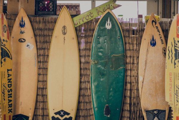 shopify email hosting 4 surf scene